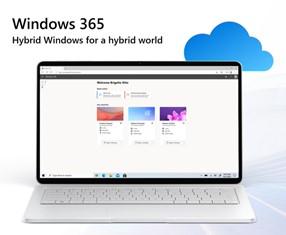 Hybrid Windows for a hybrid world